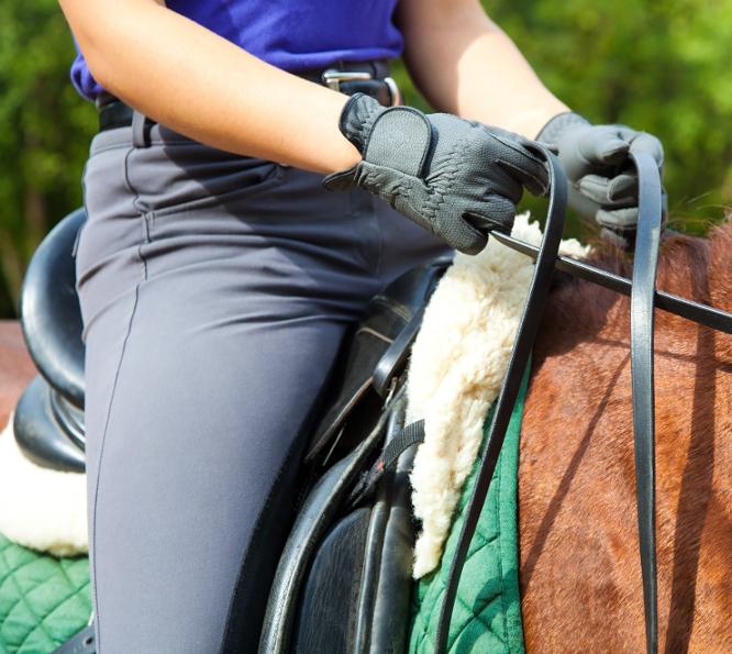 Ryttertræning til dig. Ryttertræning til rytteren. Ryttertræning til hesteejeren. Ryttertræning til ponyejeren. Kan man få ryttertræning? Sid bedre i sadlen. Hvordan kan jeg sidde bedre i sadlen? Hvordan sidder jeg bedre i sadlen? Hvorfor sidder jeg dårligt i sadlen? Afhjælp med ryttertræning. Sidder jeg dårligt i sadlen? Kan jeg sidde bedre i sadlen? Sid bedre på din hest med ryttertræning. Sid bedre på din pony med ryttertræning. Hvordan sidder jeg bedre på min hest? Hvordan sidder jeg bedre på min pony? Kan jeg sidde bedre på min hest? Prøv ryttertræning. Kan jeg sidde bedre på min pony? Sid korrekt på din hest med ryttertræning. Sid korrekt på din pony med ryttertræning. Hvordan sidder jeg korrekt på min hest? Hvordan sidder jeg korrekt på in pony? Med ryttertræning kan du sidde korrekt og lige i sadlen. Øg din præstation i dressur med ryttertræning. Øg din præstation i spring med ryttertræning. Hvordan forbedrer jeg min præstation i dressur? Hvordan bliver jeg en bedre dressurrytter? hvordan forbedre jeg min præstation i spring? Hvordan bliver jeg en bedre springrytter? Forbedre din præstation i military med ryttertræning. Hvordan bliver jeg en bedre militaryrytter? Hvordan bliver jeg bedre til military? Bliv en bedre westernrytter med ryttertræning og veterinær kiropraktik til din hest. Hvordan bliver jeg en bedre westernrytter? Bliv bedre til western pleasure. Bliv en bedre western pleasure rytter med ryttertræning og kiropraktik til din hest. Bliv bedre til ridebanespringning. Øg din præstation i ridebanespring med ryttertræning. Øg din præstation i western trail. Bliv en bedre western trail rytter med ryttertræning. Hvordan bliver jeg bedre til western trail? Øg din præstation i western reining med ryttertræning og kiropraktik til din pony. Hvordan bliver jeg bedre til reining? Øg din præstation i barrel race med ryttertræning og veterinær kiropraktik til din hest. Hvordan forbedre jeg min præstation i barrel race? Undgå at påvirke din hests balance med ryt
