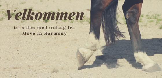 Velkommen til siden med indlæg fra Move in Harmony. Her kan du læse forskellige indlæg om holistiske behandlingsformer til dit dyr, bevægeapparatet og ryttertræning. Du kan læse om kiropraktik, kiropraktik til dyr, kiropraktik til hund, kiropraktik til pony, kiropraktik til kat,kiropraktik til hest, akupunktur til dyr, akupunktur ril hest, skupunktur til hund,akupunktur til pony, akupunktur til kat og meget mere.